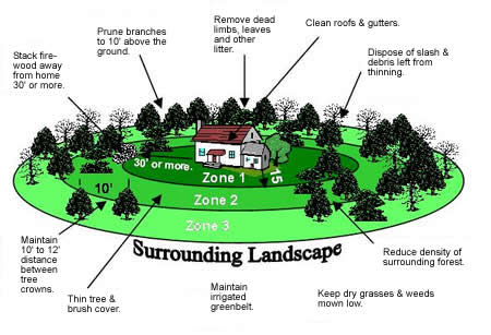 Waterwise landscaping in the san juan basin for Building a defensible home